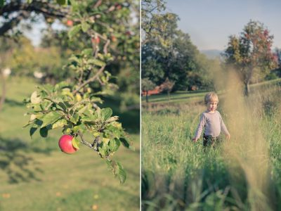 Herbstliches Familienshooting im Apfelgarten
